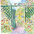 Garden Gate and Nasturtiums