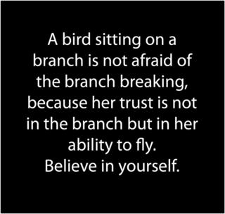 Bird trust