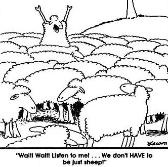 Sheep gary larson