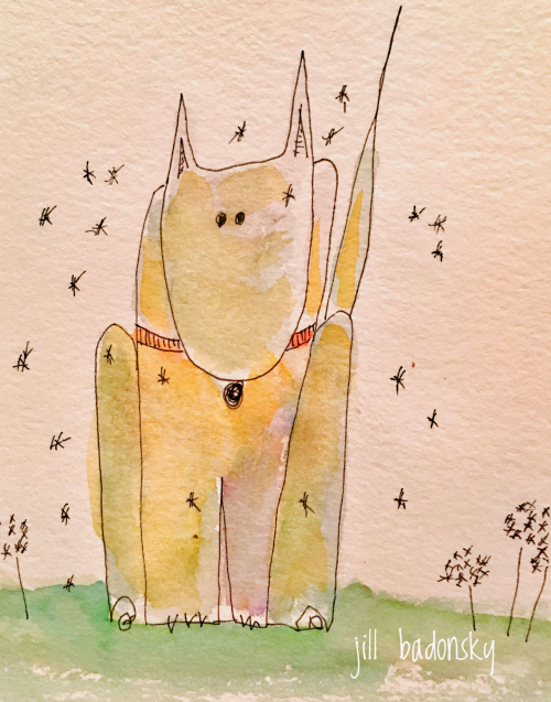 Dog dandelion